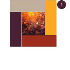 fall color palette for weddings | PLAN A FALL WEDDING: Your Wedding Color Palette