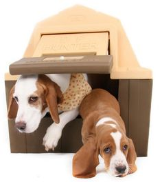 Dog House Heated