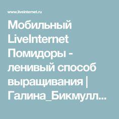 Мобильный LiveInternet Помидоры - ленивый способ выращивания | Галина_Бикмуллина - ЗЕРКАЛО ДУШИ |