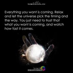 Everything You Want Is Coming