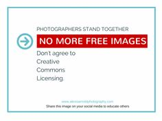 truth- about-creative-commons -lisencing- protect -your-art-photographs-artists-deserve -to-get-paid