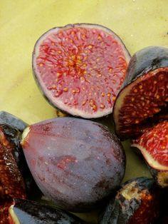 Figs, freshly gathered.