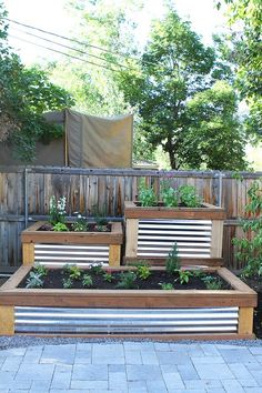 Corrugated metal and wood raised garden beds.