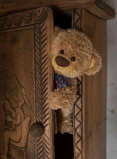 Popular on : Hidden by ckneidinger Teddy Bear Pictures, Bear Images, My Teddy Bear, Cute Teddy Bears, Tatty Teddy, Love Bear, Big Bear, Teddy Hermann, Boyds Bears