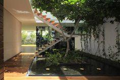Projetos de arquitetura inusitada com árvore dentro de casa