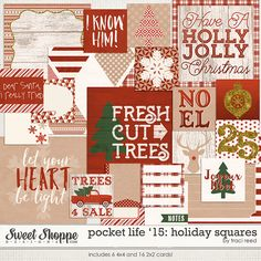 Pocket Life '15: Holiday Squares by Traci Reed