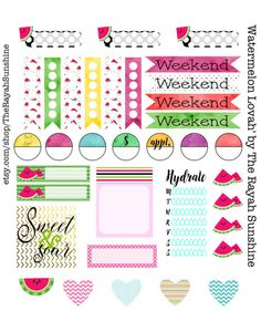 Watermelon Lovah' Planner Stickers for Happy Planner, Filofax, Erin Condren and Plum Paper Planner