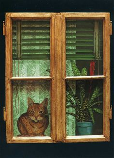 cat by the window by Anna Hollerer | Flickr - Photo Sharing!