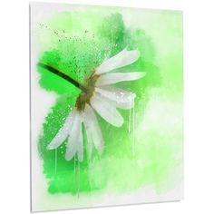 """DesignArt Floral 'White Chamomile with Green Splashes' Painting Print on Metal Size: 48"""" H x 30"""" W x 1"""" D"""