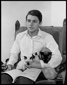 "Burt Ward played Robin the Boy Wonder on the 1960s popular ""Batman"" TV show.  Here he holds his Siamese cats at home."