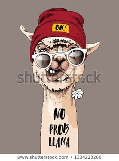 Portrait of Llama in a hipster cap, sunglasses and with a chamomile flower. No prob llama - lettering quote. Humor card, t-shirt composition, hand drawn style print. Lama Animal, Llama Drawing, Llama Arts, Funny Phone Wallpaper, Cute Llama, Funny Posters, Happy Paintings, China Art, Watercolor Animals