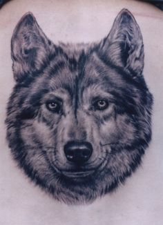 тату волк, татуировка волк, wolf tattoo | tattoo-kupchino.ru