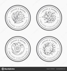 Spice Herb Vintage Label Collection Black White Sticker Templates Regarding Round Sticker Labels Template - Template Ideas Coin Design, Label Design, Branding Design, Packaging Design, Jar Packaging, Label Templates, Logo Food, Monogram Logo, Vintage Labels