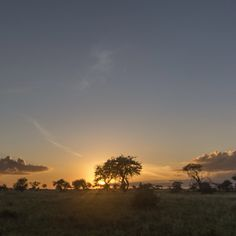 #Sunset moments in #Amboseli, #Kenya. The colors #Africa's. Amazing photographer moments by my photo story #DemipressKenya.