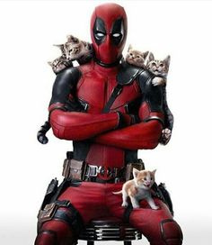 I want this to be Deadpool two. Just Deadpool chasing a bunch of cats and trying not to lose/kill them. I miss these days. Deadpool Y Spiderman, Deadpool Love, Deadpool Funny, Deadpool 2016, Deadpool Symbol, Deadpool Pictures, Deadpool Stuff, Deadpool Wallpaper, Marvel Wallpaper
