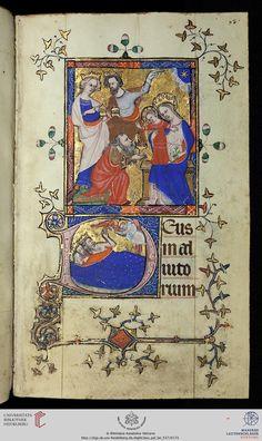 Vatikan, Biblioteca Apostolica Vaticana, Pal. lat. 537  Stundenbuch für den Gebrauch von Sarum (Diözese Salisbury)  London (?)/Frankreich (Ergänzung), um 1350/nach 1401 (Ergänzung)  Das um 1350 vermutlich in London entstandene Stundenbuch (Bl. 32r-217v) wurde Anfang des 15. Jahrhunderts für einen Wittelsbacher in Frankreich erweitert (Bl. 4r-31v, 218r-223v)  Bibliotheca Palatina Zitierlink: http://digi.ub.uni-heidelberg.de/diglit/bav_pal_lat_537   i  URN: urn:nbn:de:bsz:16-diglit-97258   i…