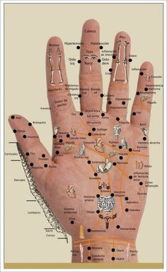 Hand Reflexology Chart for using doTERRA oils Herbal Remedies, Health Remedies, Natural Remedies, Health And Beauty, Health And Wellness, Health Fitness, Health Tips, Health Benefits, Health Care