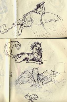 gryphs by Novawuff on deviantART