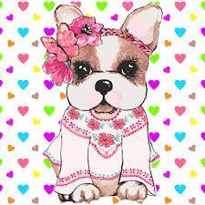 Resultado de imagen para imagenes simones perro