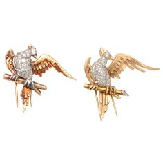 Magnificent Bird Clips | From a unique collection of vintage brooches at https://www.1stdibs.com/jewelry/brooches/brooches/