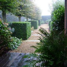 moderne tuin - Chris Ghyselen - tuinarchitect