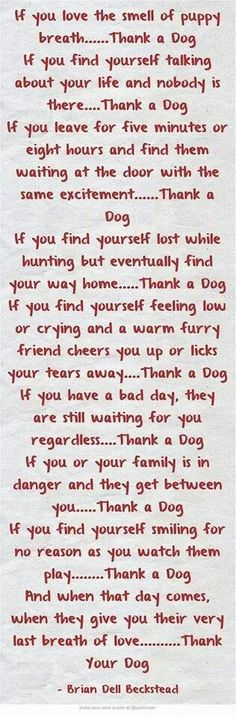 Thank your dog