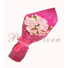 A elegant bouquet of delicate and delightful Carnation flowers. Online Flower Shop, Classic Beauty, Carnations, Fascinator, Bouquet, Delicate, Elegant, Flowers, Classy