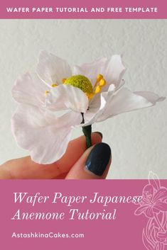 Click here to download free template!   As you know, the anemone is one of my favorite flowers to create out of wafer paper. I love using them to decorate kids cakes and colorful flower arrangements.  Just follow the video tutorial where I show you how to make this wafer paper flower step by step. And of course, the flower template is included! The rest of the tools you will need to make the flower are listed below. Edible Flowers Cake, Wafer Paper Flowers, Fondant Flower Cake, Wafer Paper Cake, How To Make Paper Flowers, Gum Paste Flowers, Fondant Bow, Fondant Cakes, Sugar Flowers