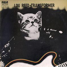 The Kitten Covers: Lou Reed (http://thekittencovers.tumblr.com/)