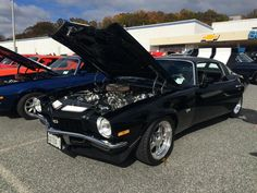 2014 Jerry's Fall Car Show, benefiting the Casey Cares Foundation