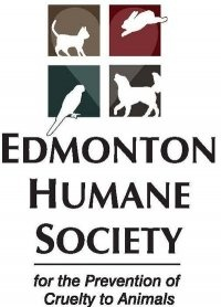 Is The Edmonton Food Bank A Registered Charity