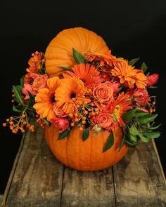 Pumpkin Floral Arrangements, Flower Arrangements, Pumpkin Centerpieces, Floral Centerpieces, Fall Flowers, Wedding Flowers, Purple Flowers, Vegetable Bouquet, Pumpkin Wedding