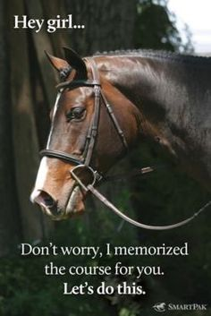 from my horse