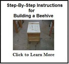 Bees-and-Beekeeping: Build a Bee Hive - A Step-by-Step Guide