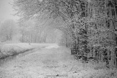 reduction by veredit - isabella.kramer: a winter dream