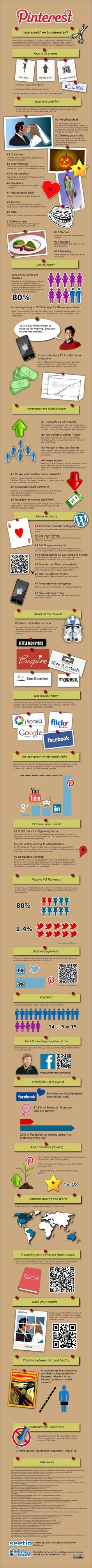Pinterest: Why Should We Be Interested?  #Pinterest Infographic