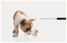 Print ad: Nanoblocks: Dog