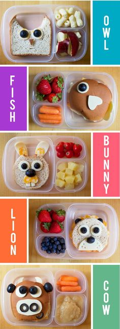 These animal themed Bento Boxes are inspiration for healthy meals that are also adorable and fun for your kids. http://hative.com/fun-and-easy-school-lunch-ideas-for-kids/