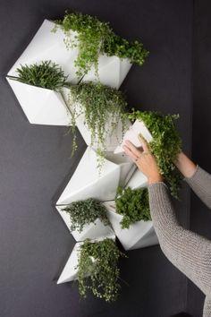 Corporate Interior Design, Minimalist Garden, Concrete Crafts, Ground Cover Plants, Flower Pots, Flowers, Plant Wall, Modern Landscaping, Bathroom Interior Design