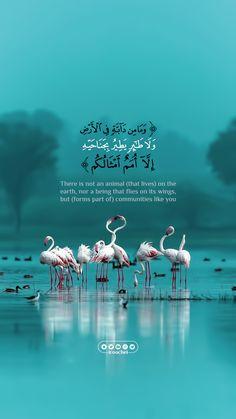 Quran Quotes Love, Best Islamic Quotes, Beautiful Quran Quotes, Quran Quotes Inspirational, Beautiful Prayers, Arabic Love Quotes, Muslim Quotes, Religion Quotes, Islam Religion