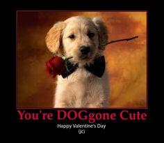 puppy valentine cute pun