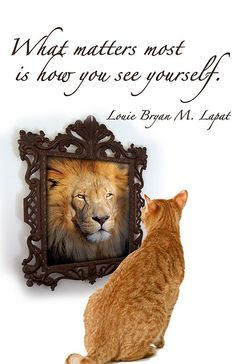 """""""What matters most is how you see yourself"""" & you are beautiful :) Seeing You Quotes, Healthy Body Images, What Matters Most, Self Image, Cat Quotes, Diva Quotes, See You, Big Cats, Be Yourself Quotes"""