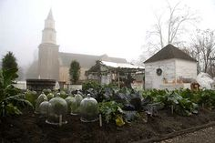 1000 Images About Colonial Herb Gardens On Pinterest Colonial Williamsburg Mount Vernon And