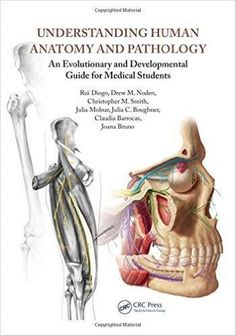 Test bank for human physiology from cells to systems 8th edition by test bank for human physiology from cells to systems 8th edition by sherwood test bank pinterest medical students fandeluxe Gallery