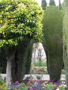 alhambra gardens granada | photo