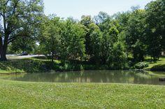 The natural pond outside Harmon Hall | www.lindenwood.edu