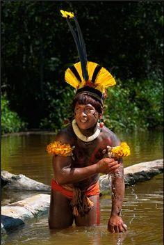 Xingu, Brasil