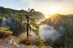 https://flic.kr/p/C9GCQT | The Magic of the Saxony Switzerland (Explore) | Im Zauber der Sächsischen Schweiz. Mit einem Bild von einem wahrlich zauberhaften Dezembermorgen möchte ich euch zum Abend des 3. Advent einen schönen Gruß senden!