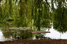 swing by the lake... how great would it be to have this little get away spot!!