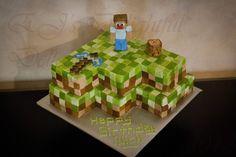 My Sweet Life: Minecraft. A ten year old boy's dream cake.